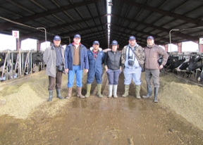 Diploma in managamentul avansat al fermelor de lapte