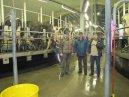 USA GTC 2013 ianuarie - Columbia River Dairy sala de muls rotativa 2x80